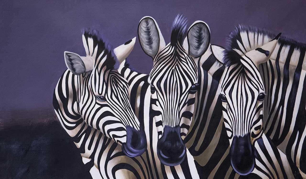 (no name). Zebras. Monochrome N4