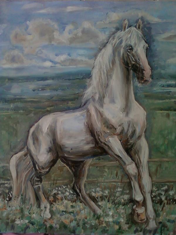 Ольга Двинянинова. Белый конь