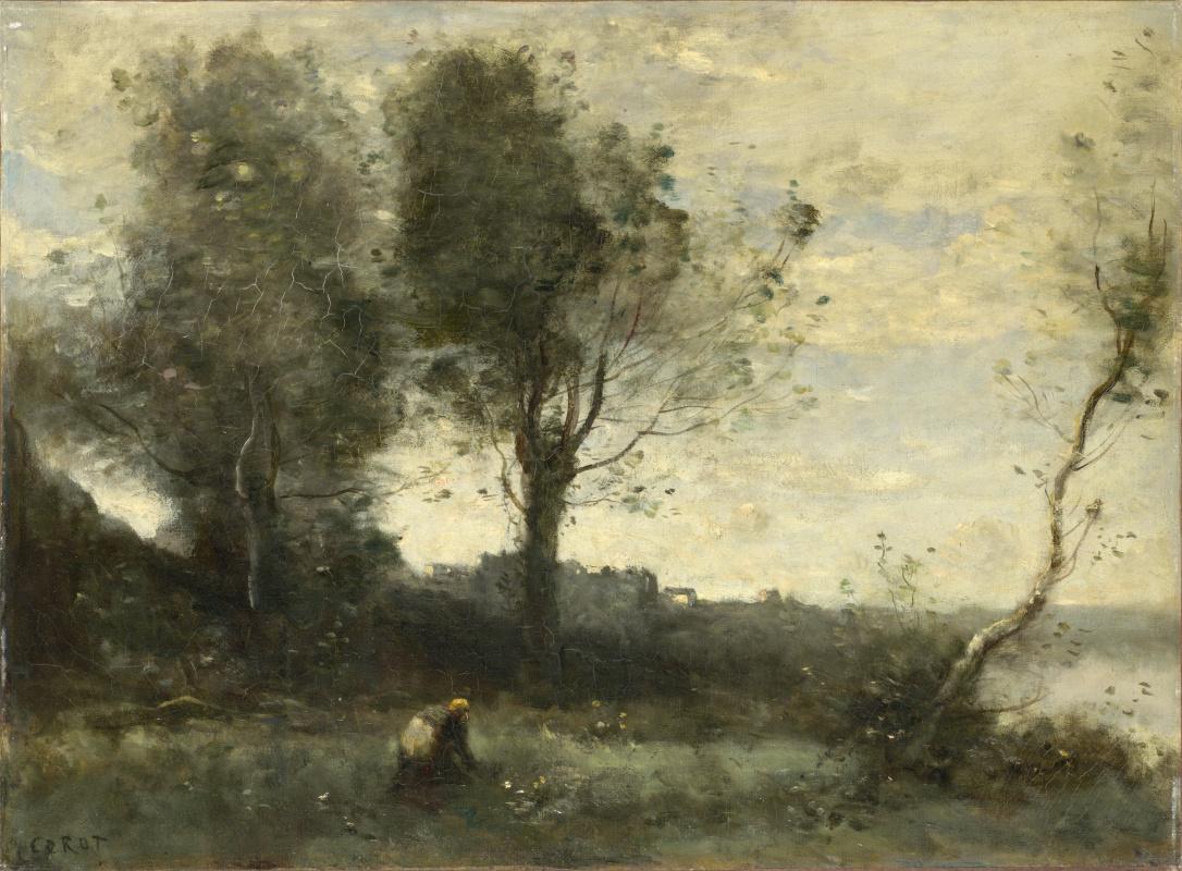 Камиль Коро. Дерево