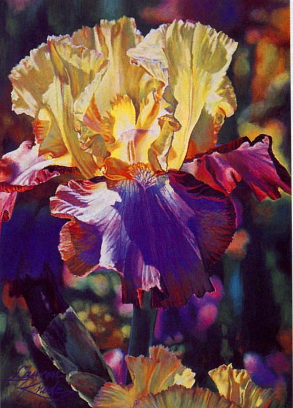 Лорен Кнод. Райский цветок