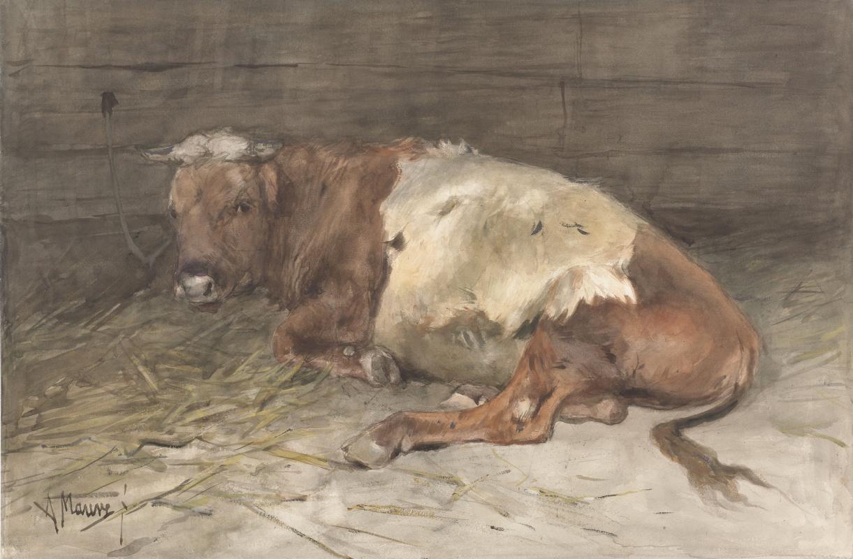 Anton Maouve. Lying young buck