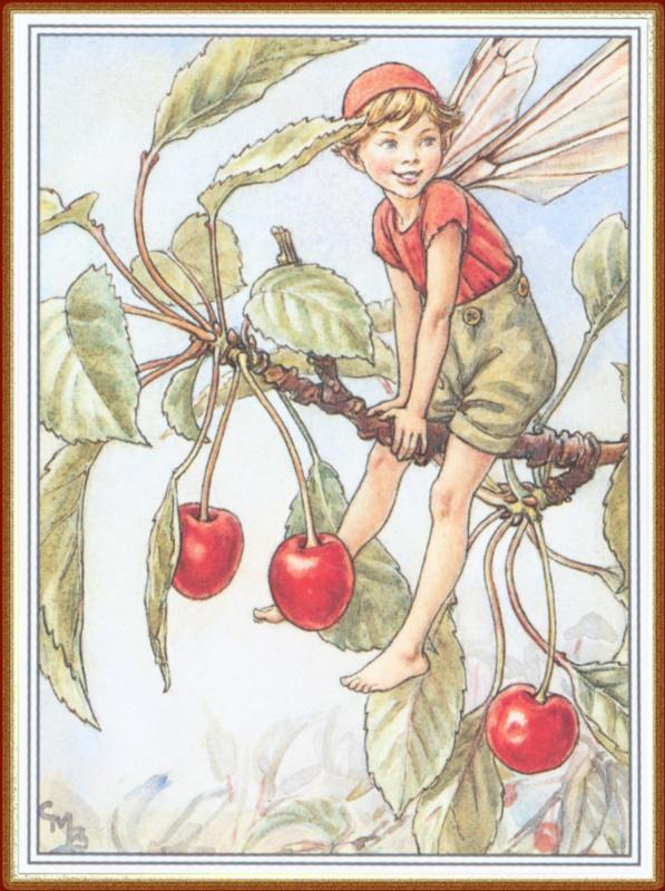 Cecil Mary Barker. Cherry