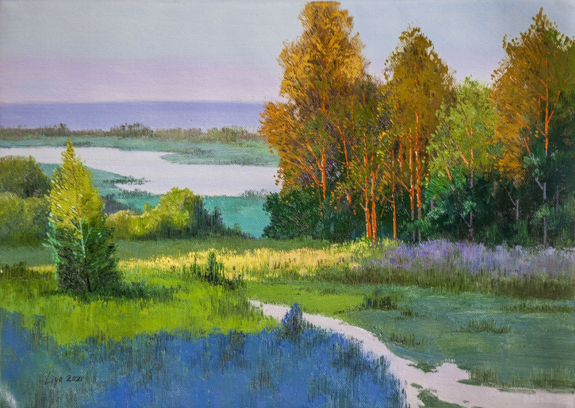 (no name). Native open spaces. View of the forest and the river