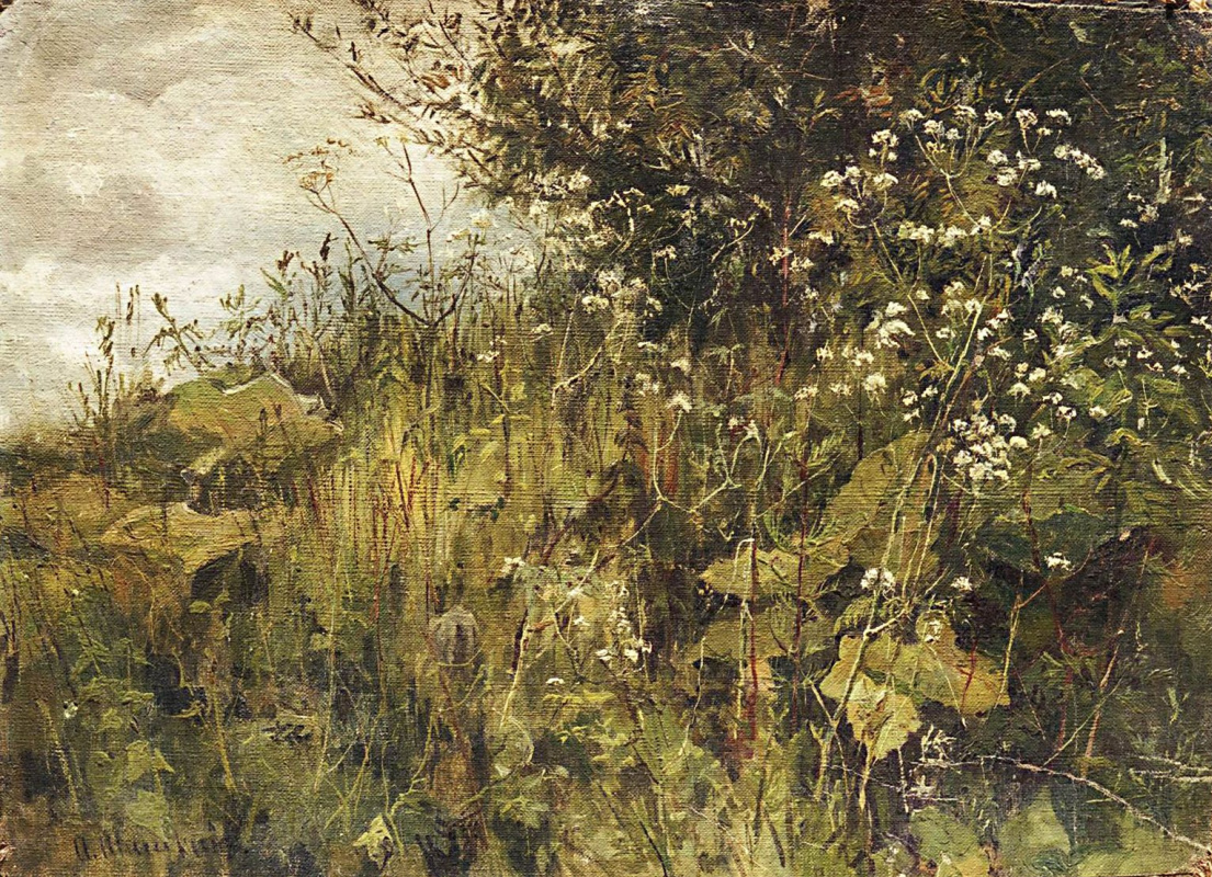 Ivan Shishkin. Goutweed-grass
