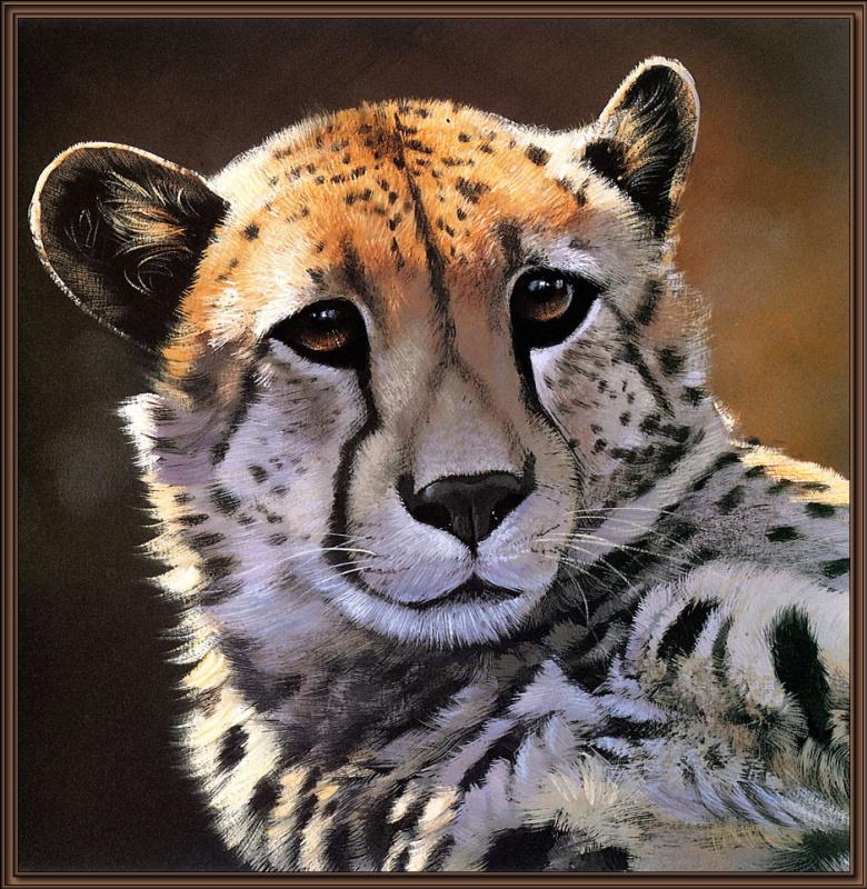 Поллианна Пикеринг. Большие кошки 06