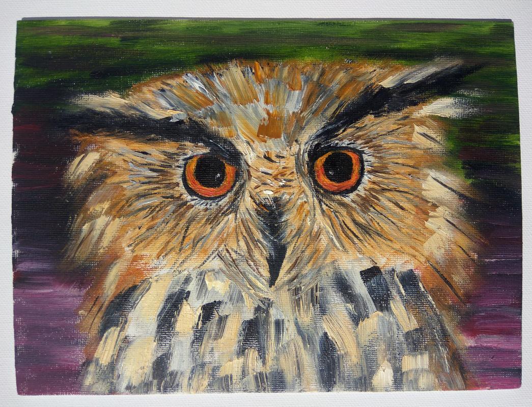 Anna. Owl