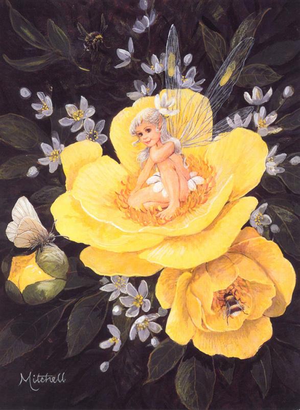 Барбара Митчелл. Желтые цветы