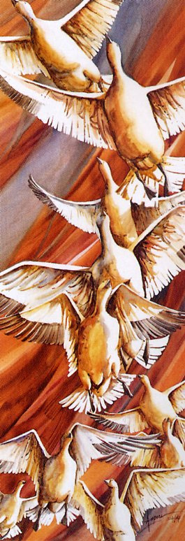 Шанталь Анже. Птицы