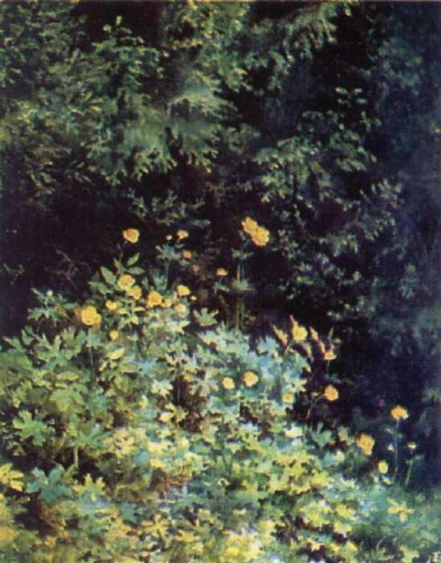 Elena Dmitrievna Polenova. Yellow flowers
