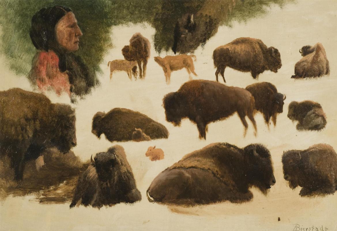 Альберт Бирштадт. Индеец и бизоны. Эскиз