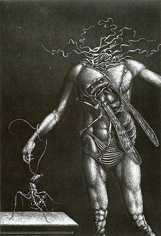 Висуализадор Де Ймаген. Сюжет 6