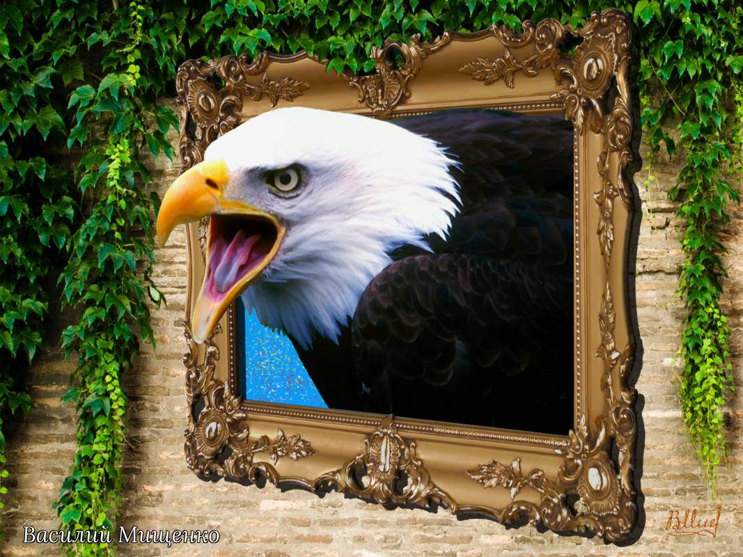 Vasiliy Mishchenko. Bald eagle from the picture