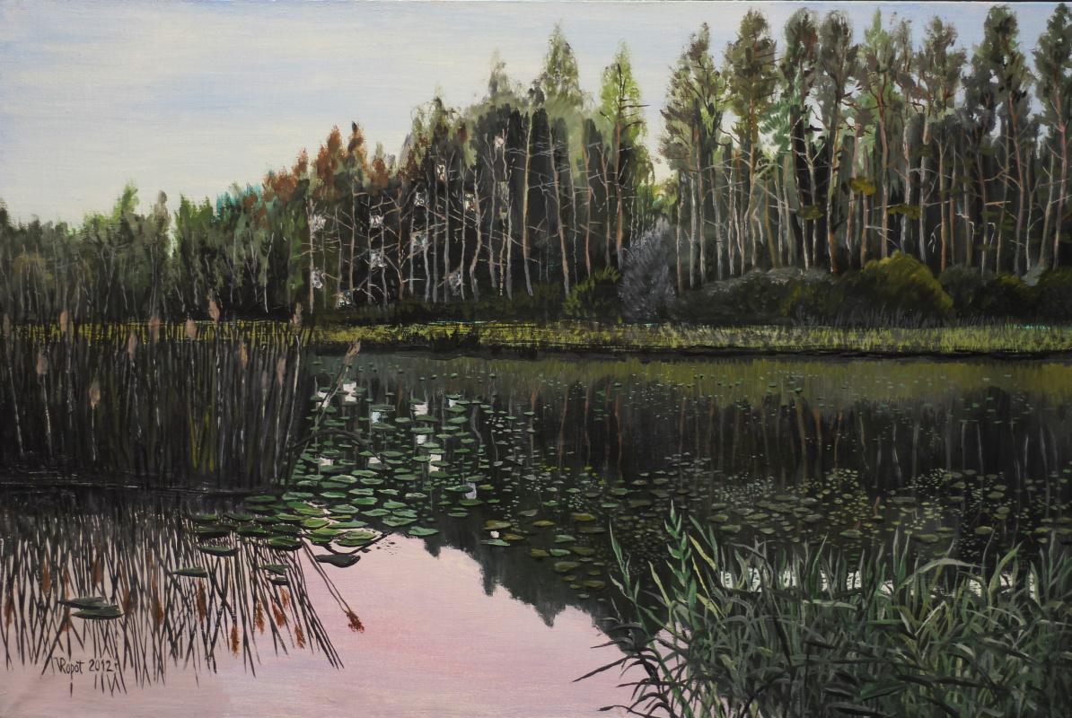 Vladimir Adamovich Ropot. In water lilies