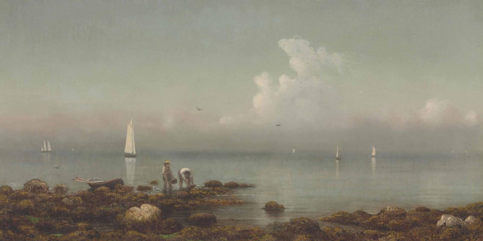 Martin Johnson Head. The coast of the island near New Haven