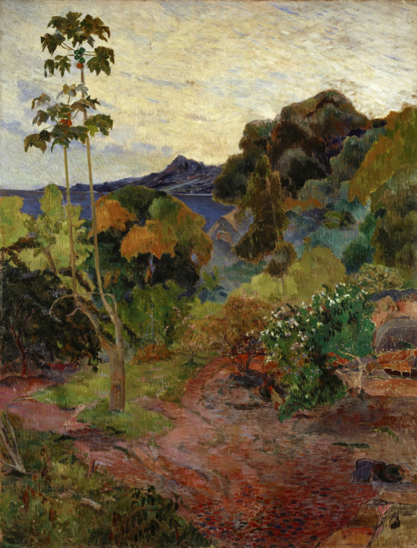 Paul Gauguin. Landscape of Martinique