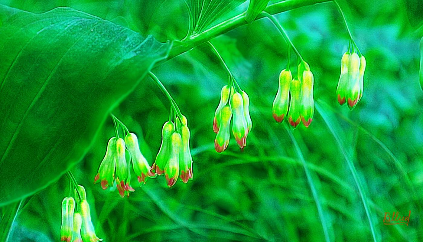 Vasiliy Mishchenko. Lilies of the valley