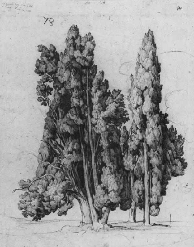 Август Лукас. Кипарисы на Вилле д'Эсте в Тиволи