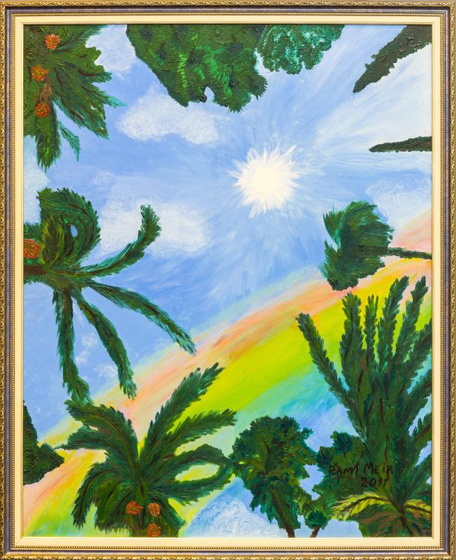 Рами Меир. Tropical secrets
