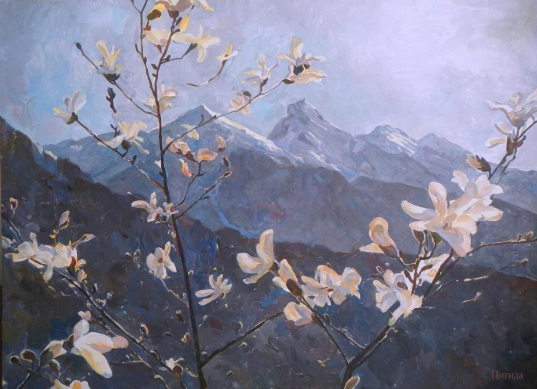 Serafima Mikhailovna Pigida. Spring in the mountains