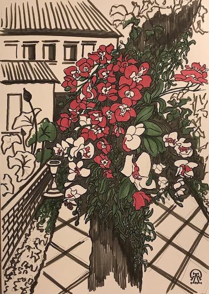 Larissa Lukaneva. Phu Quoc. Orchid. Sketch.
