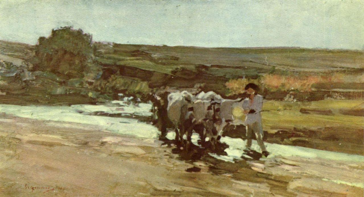 Николае Григореску. Воз с волами на броде
