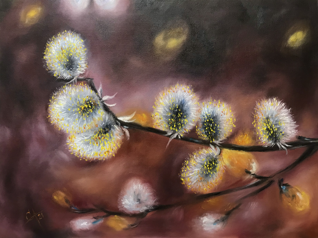 Svetlana Arkhipova. Fluffy willow twig