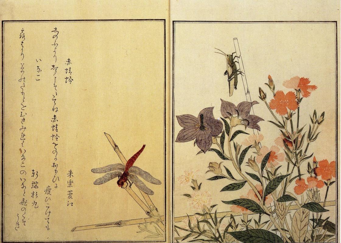 Kitagawa Utamaro. Illustration of a book about insects