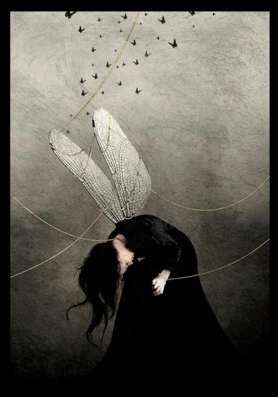 Оана Камбреа. Пойманная бабочка