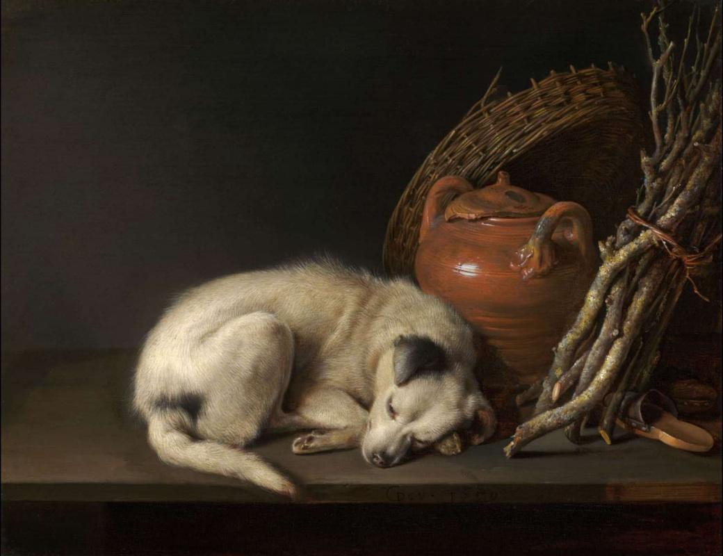 Gerrit (Gerard) Dow. Sleeping dog and a clay pot
