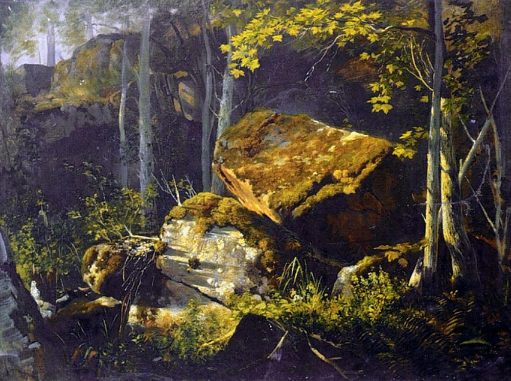 Александр Васильевич Гине. На Валааме. Камни в лесу