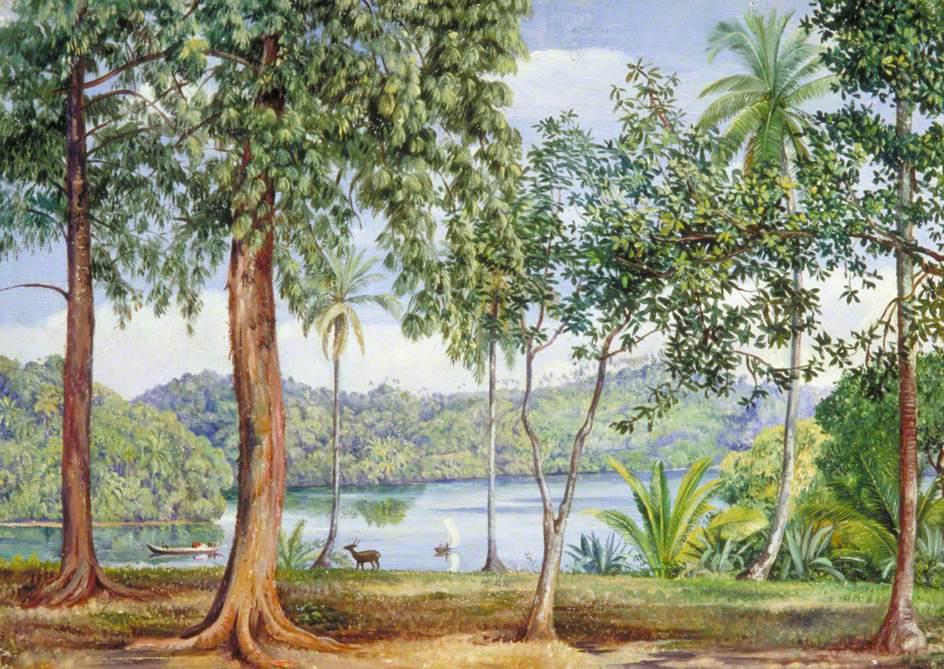 Марианна Норт. Речной пейзаж, вид из Калутара, Цейлон