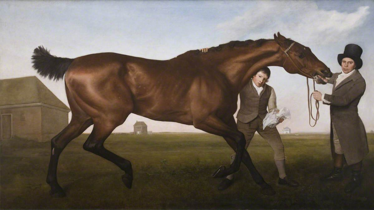 George Stubbs. A horse named Hambleton