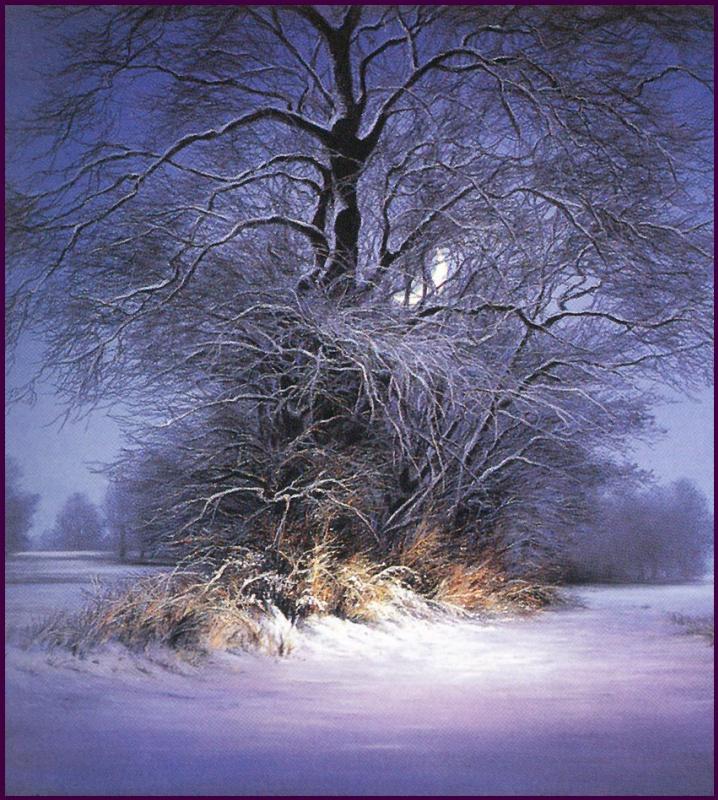 Анна Садворс. Заснеженное дерево