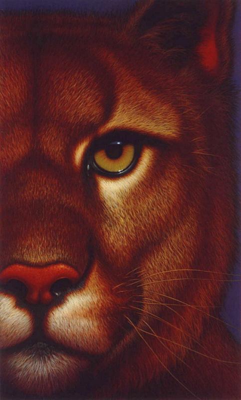 Richard Caudry. Puma