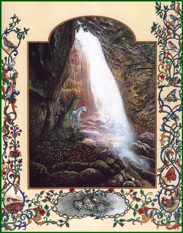 Линн Черри. Водопад