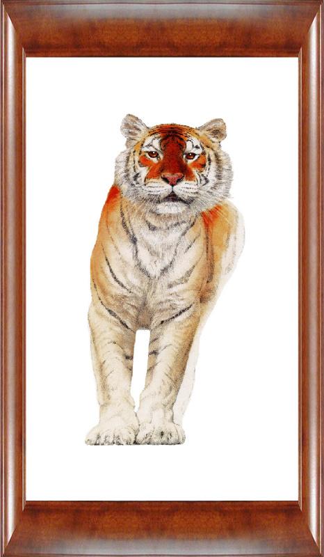 Даголд Стермер. Тигр