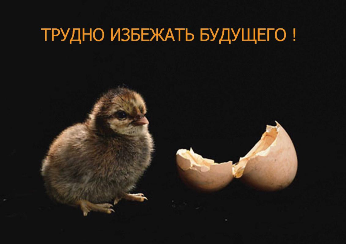Yuri Dmitrievich Novosyolov. It is hard to avoid in the future.