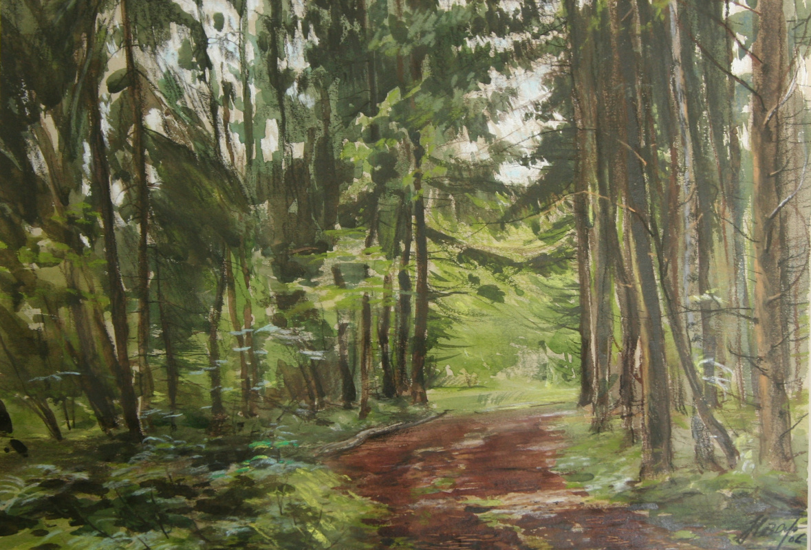 Andrey Noarov. Road in the forest