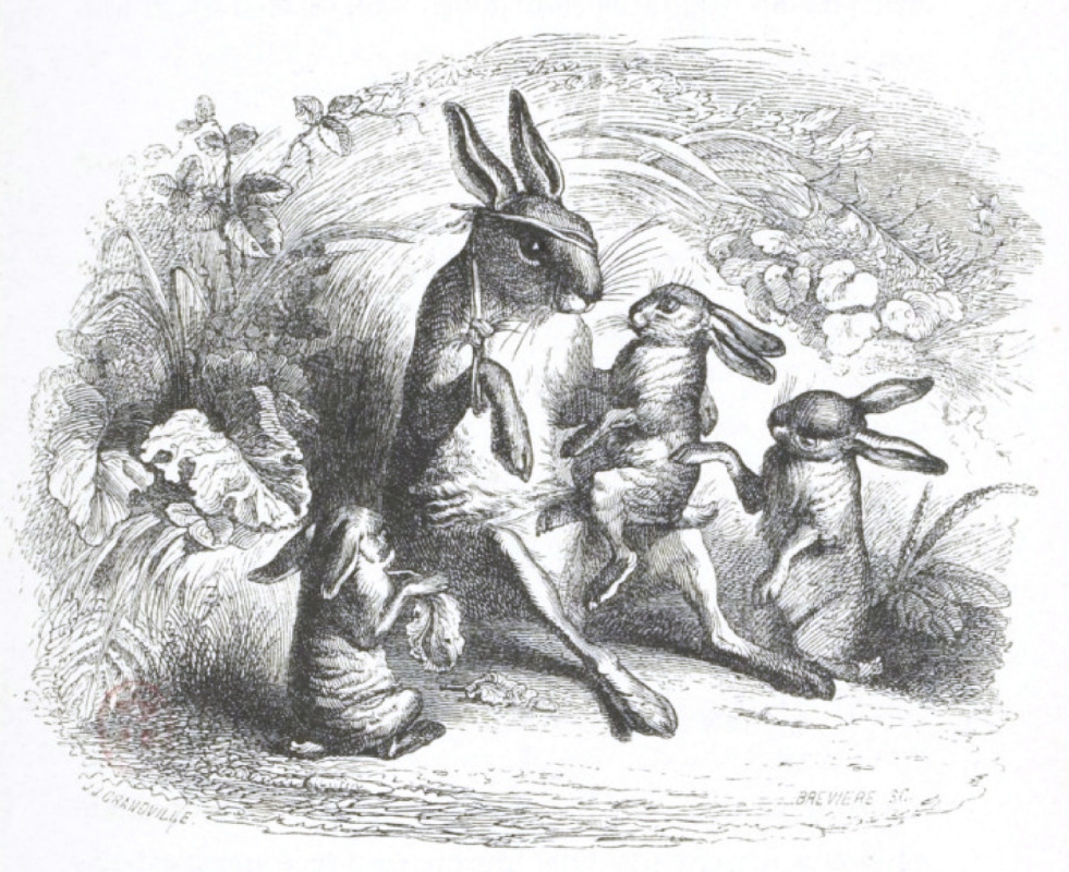 """Jean Inias Isidore (Gerard) Granville. Stories of the old Hare. """"Scenes of public and private life of animals"""""""