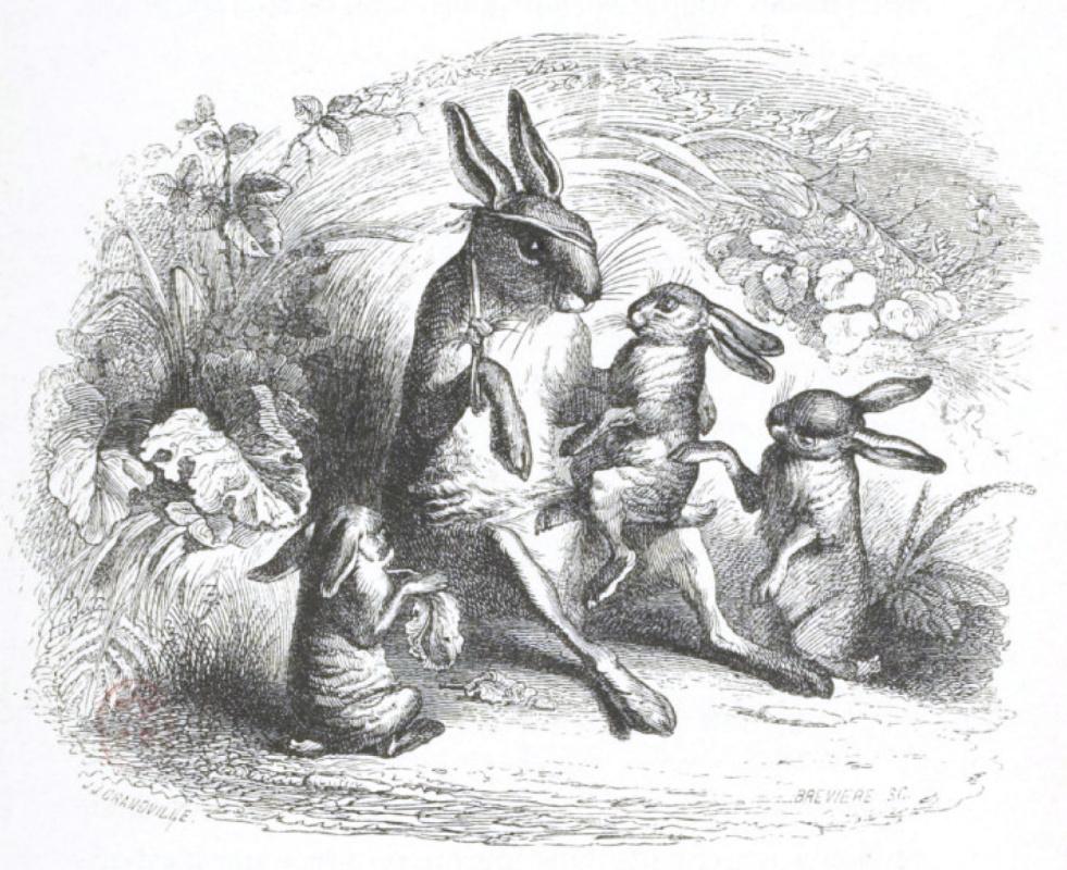 """Жан Иньяс Изидор (Жерар) Гранвиль. Истории старого Зайца. """"Сцены общественной и частной жизни животных"""""""
