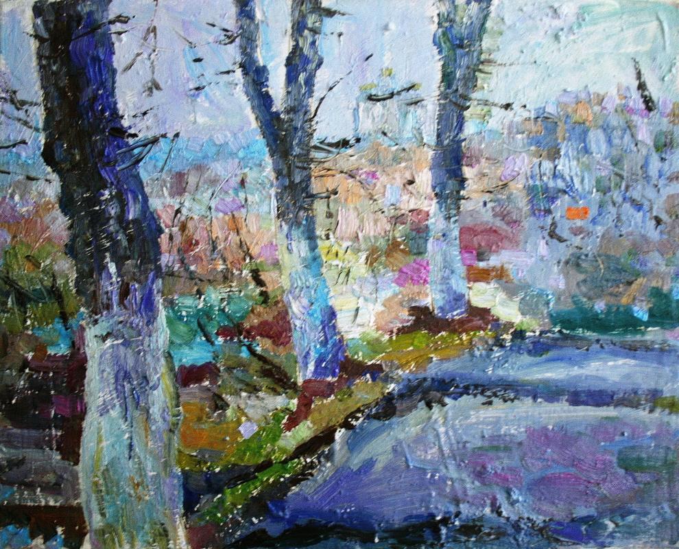 Mikhail Rudnik. Study 208