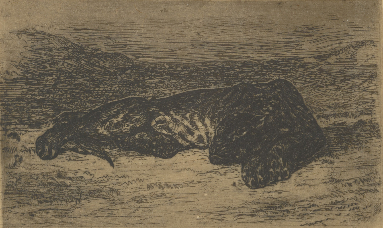Eugene Delacroix. Tiger resting in the desert