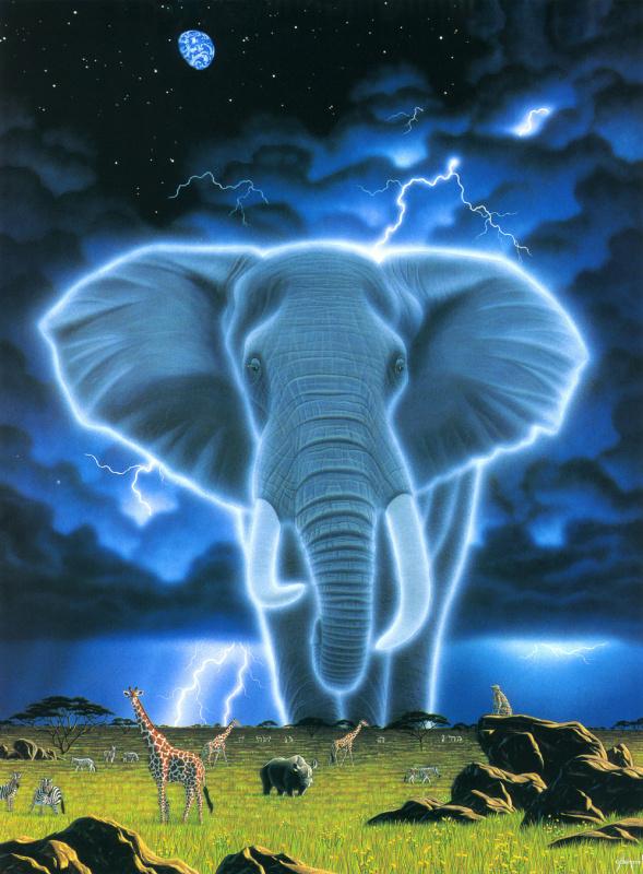 Уильям Шиммел. Дух Африки