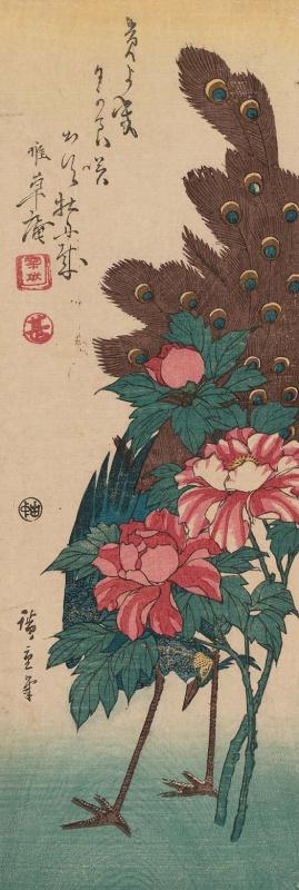 Утагава Хиросигэ. Павлин за цветущими пионами