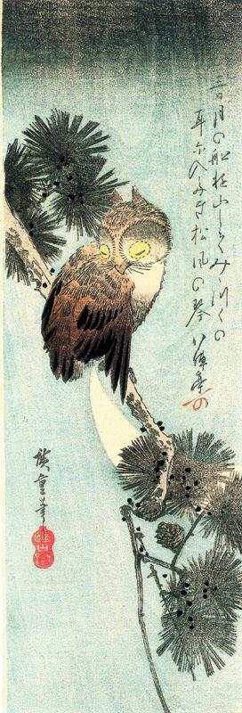 Утагава Хиросигэ. Спящая сова на ветке сосны