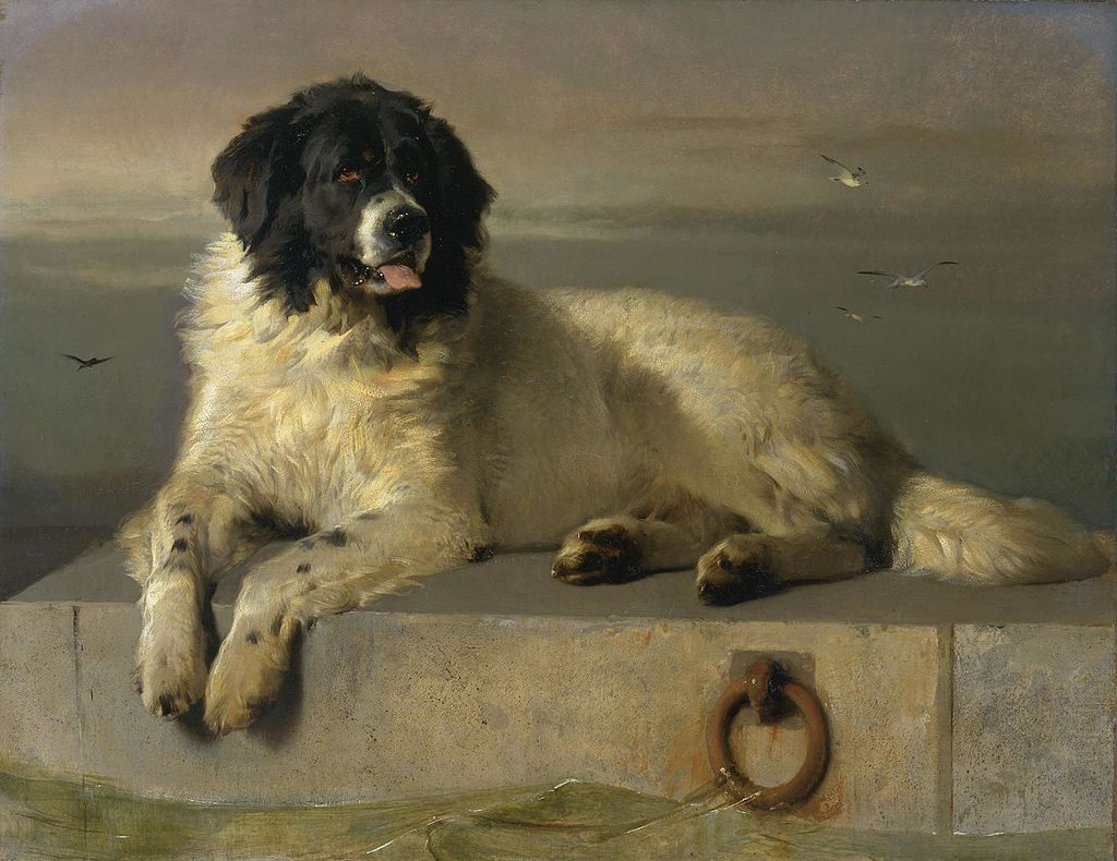 Edwin Henry Landseer. A worthy member of a humane society