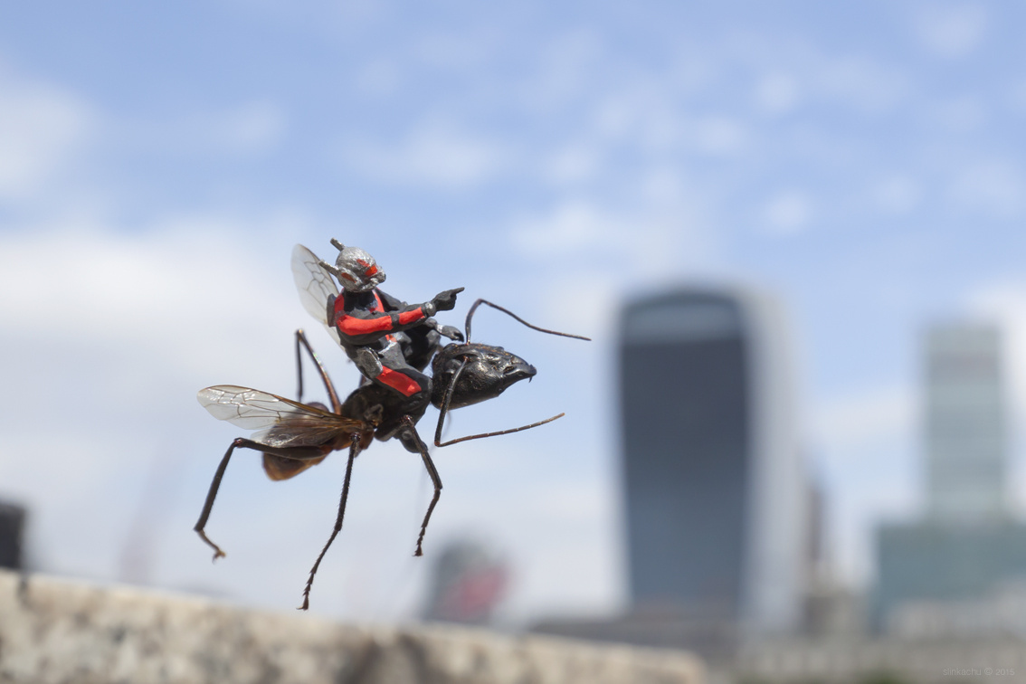Slinkachu. Ant-Man II
