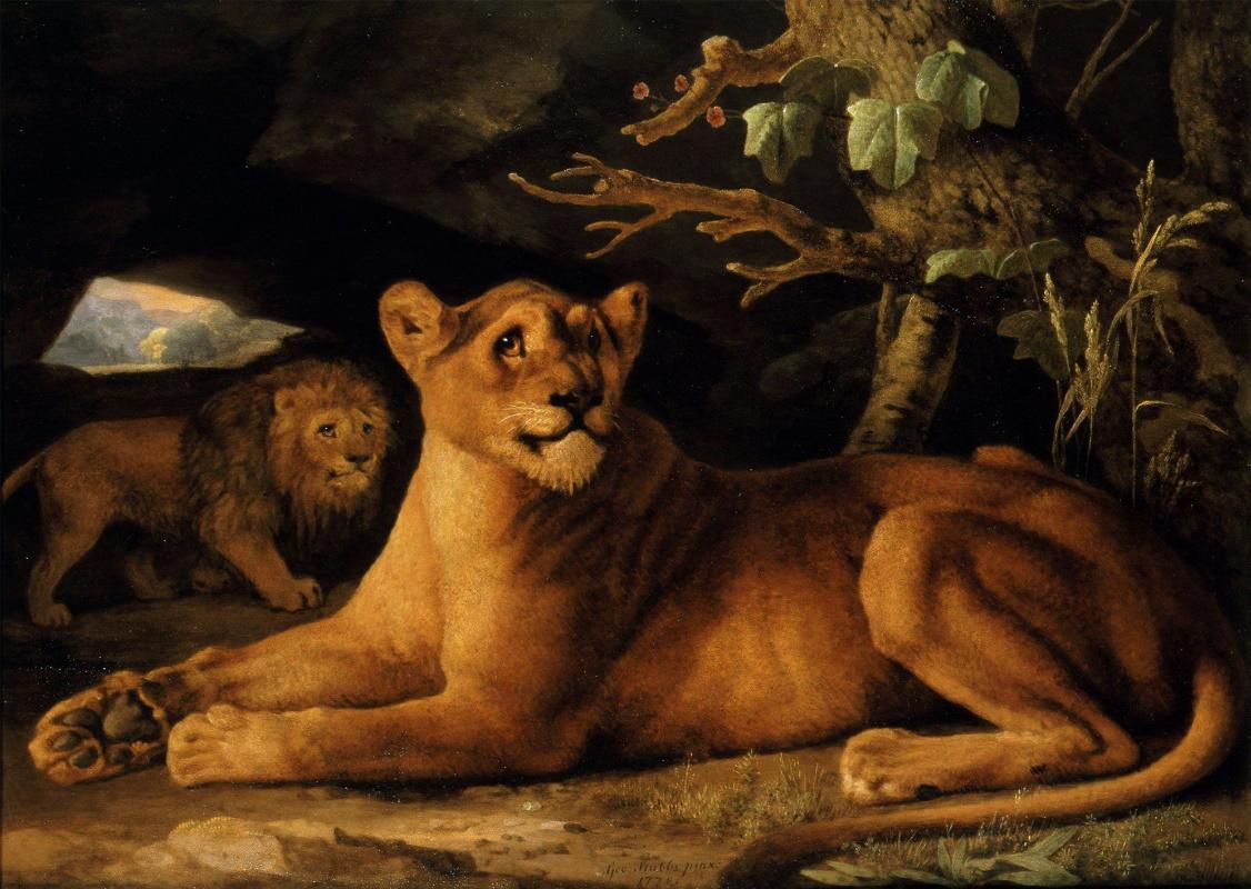 Джордж Стаббс. Лев и львица