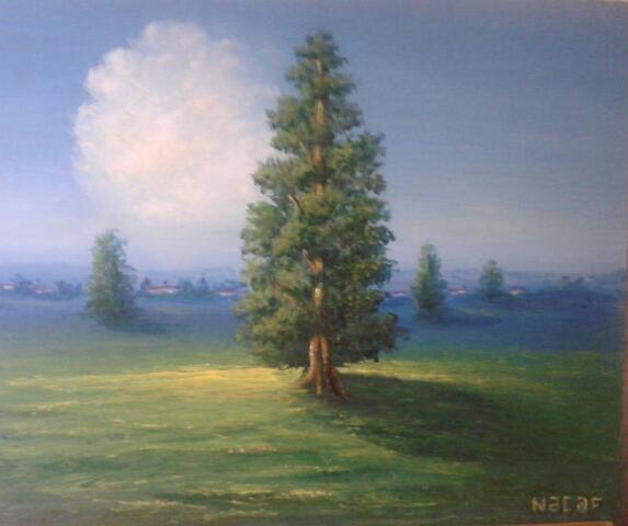 Najaf Mamedali oglu Mamedov. Oblaka