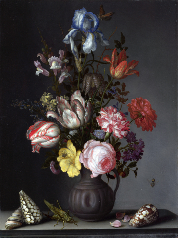 Baltazar van der Ast. A bouquet of flowers in a vase and sea shells